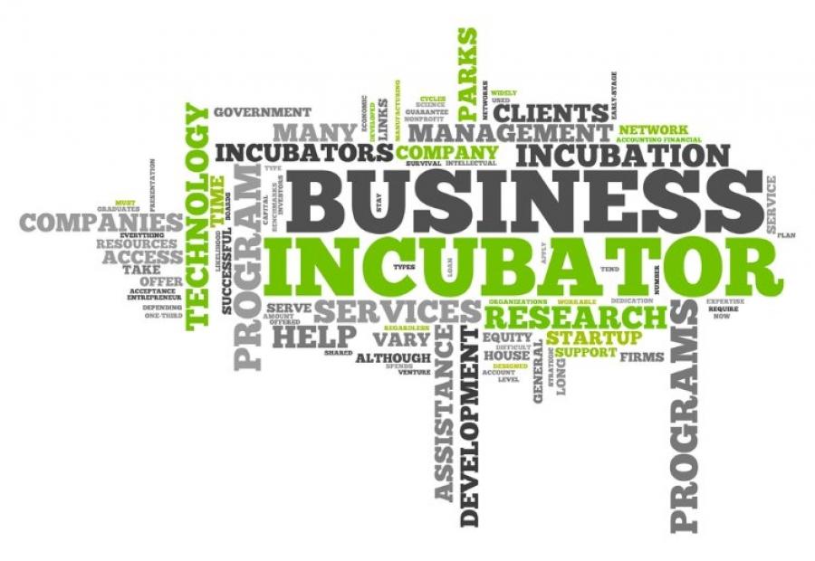 Miliki Lembaga Inkubator Bisnis, LP3M-UNIMUDA Ikuti RAKOR bersama Kemdes RI
